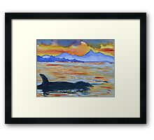 Alaska Killer Whale at Sunset Framed Print