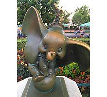 The elephants on parade Photographic Print