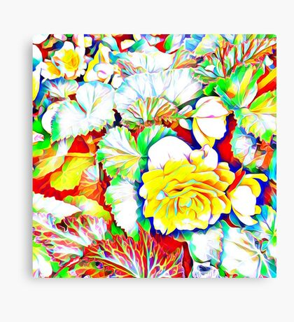 Yellow Begonias with Leaves Canvas Print