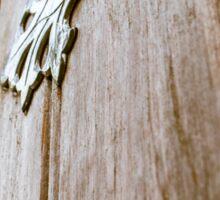 Wood Door Sticker