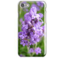 Lavender Stalks iPhone Case/Skin