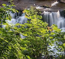 Rock Island State Park1 by pchelptips