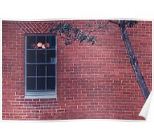 Tree with window Poster
