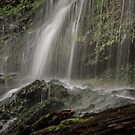 Rock Island State Park2 by pchelptips
