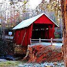 Campbell's Covered Bridge by Darlene Lankford Honeycutt