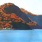 Brisk Bay, Patonga NSW by Michael Jones