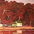 Dark Corner, Patonga, NSW by Michael Jones