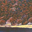 Pacific Head, Patonga NSW by Michael Jones