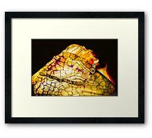 Deserted Night Framed Print
