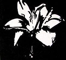 Daylily by kellyjoubert
