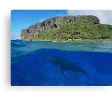 Coastal cliff split with whale underwater sea Canvas Print