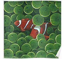 Clownfish - acrylic painting Poster