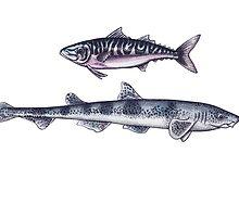 Double Fish by Hazel Partridge