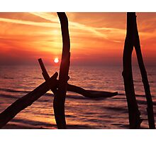 Colorful red sunset behind driftwood sculpture art photo print Photographic Print