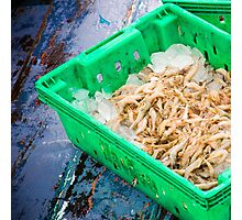 Fresh seafood in boxes at the fish market Photographic Print