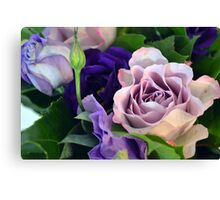 Purple and pink roses closeup  Canvas Print
