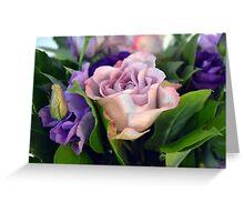 Purple and pink roses closeup  Greeting Card