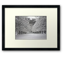 Wintersday  Framed Print