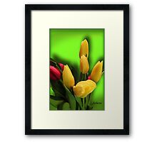 Shades of Spring Framed Print