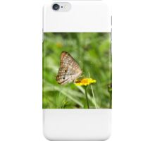 WHITE PEACOCK BUTTERFLY iPhone Case/Skin