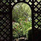 Trellis Arch by phil decocco