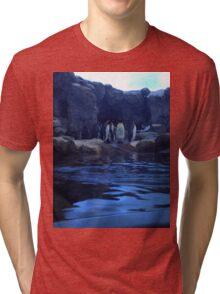 Penguin Plunge Tri-blend T-Shirt