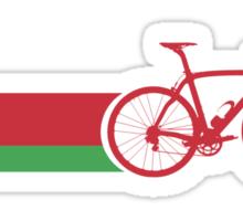 Bike Stripes Belarus Sticker