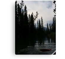 Wild Outdoors Canvas Print