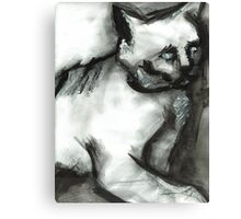 Figure Drawing of a Scary Cat Canvas Print