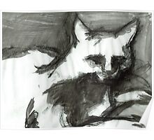 Figure Drawing of a Scary Cat II Poster