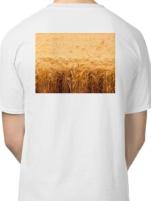 California Wheat Field Classic T-Shirt