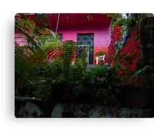 colores de mexico  Canvas Print