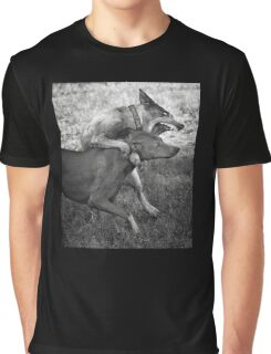 Dogs with game face on .31 Graphic T-Shirt