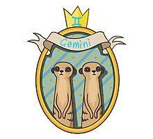 Gemini. Cartoon horoscope. Photographic Print