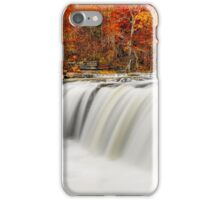 Flowing Water and Fall Leaves iPhone Case/Skin
