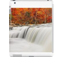 Flowing Water and Fall Leaves iPad Case/Skin