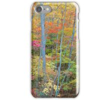 HARDWOOD FOREST, AUTUMN iPhone Case/Skin
