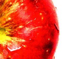 Apple Fruit Sticker