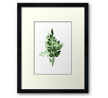 Garden Parsley Leaf Green Watercolor Illustration Painting Poster Framed Print