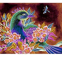 Paradise Bird in Blossoms Photographic Print