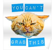 You Can't Grab this! Poster