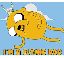 Adventure Time - Flying Jake Photographic Print