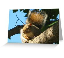 Iv Got My Eye On You PICTURE,CARD,PILLOW AND OR TOTE BAG Greeting Card