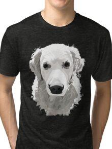 Orin Tri-blend T-Shirt