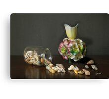 Aussie Shells & Antique Porcelain Canvas Print
