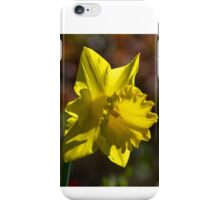 Daffodil at Gazebo Leith Park 20140830 0422  iPhone Case/Skin