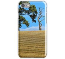 Continuity of Life iPhone Case/Skin