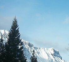 Beautiful Banff by Lauren Jacobson
