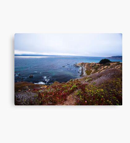 Wild Seacoast - Nature Photography  Canvas Print