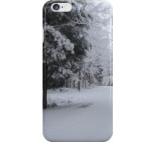 Icy Wonderland iPhone Case/Skin